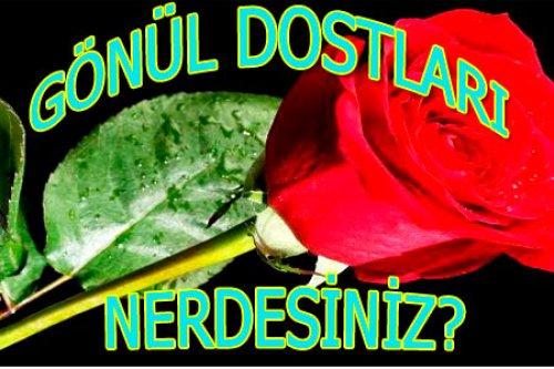 http://www.hakeminsesi.com.tr/images/haberler/gonul-dostlarina-selam-olsun2382.jpg